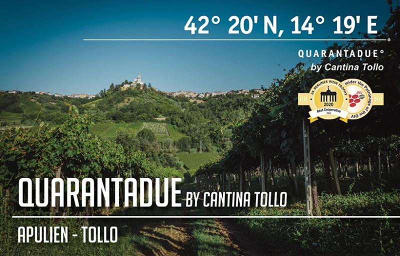 Quarantadue by Cantina Tollo