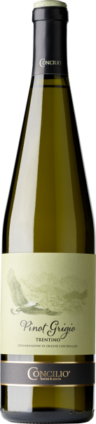 Classici Pinot Grigio Trentino 2019