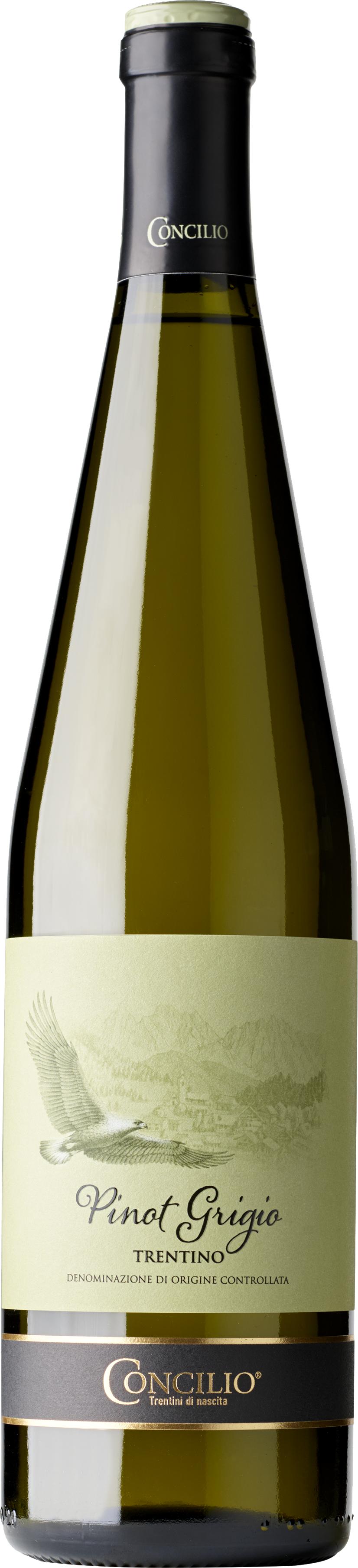 Pinot-Grigio-Trentino
