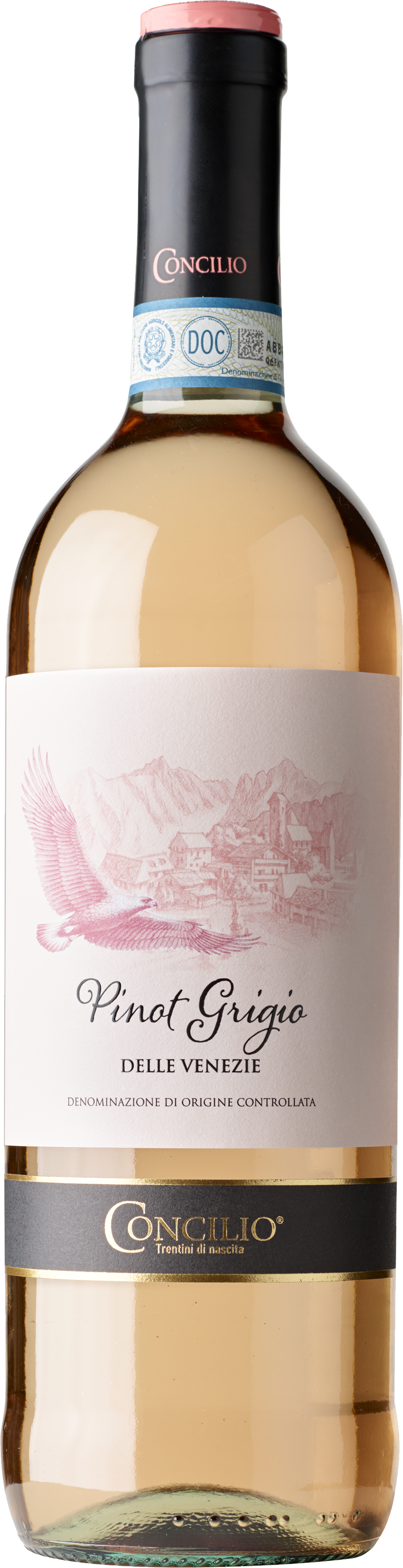 Pinot-Grigio-delle-Venezie-Ros
